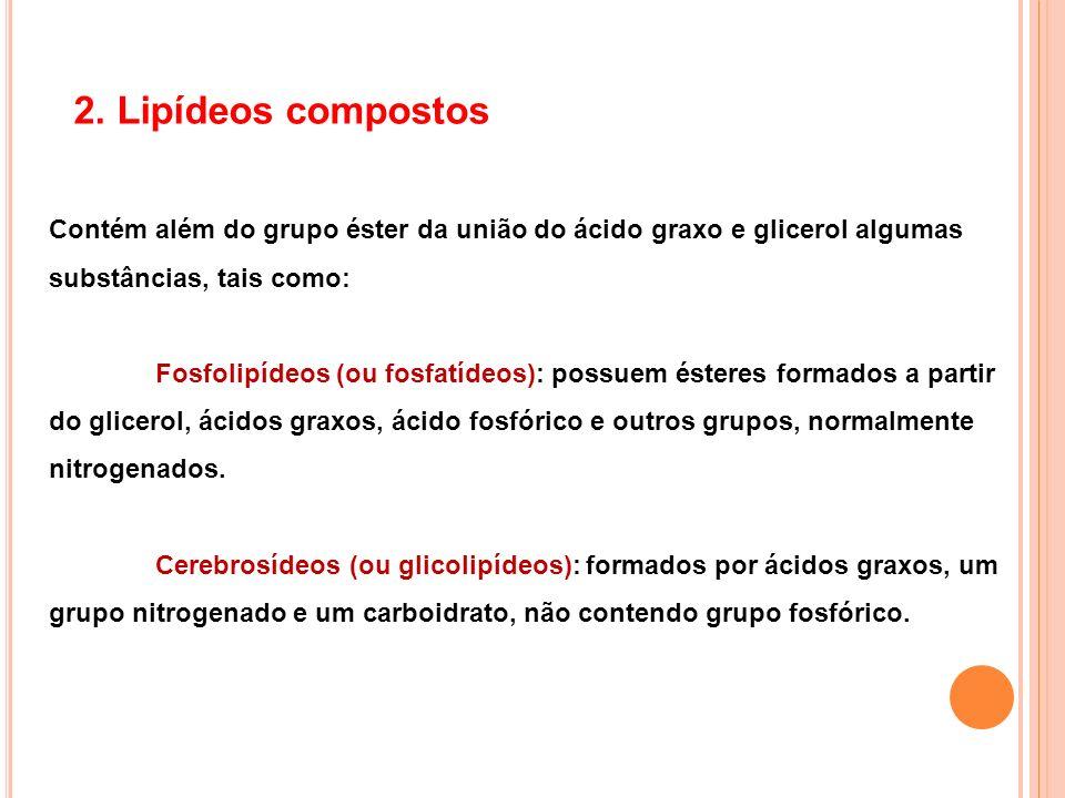 2. Lipídeos compostos Contém além do grupo éster da união do ácido graxo e glicerol algumas substâncias, tais como: Fosfolipídeos (ou fosfatídeos): po
