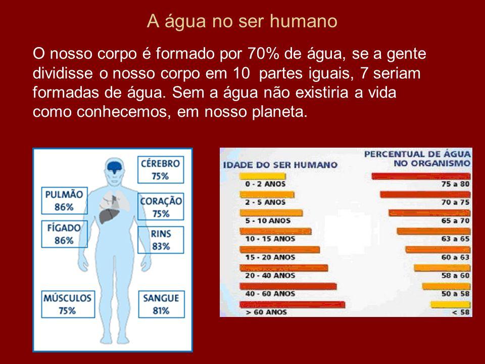 A água no ser humano O nosso corpo é formado por 70% de água, se a gente dividisse o nosso corpo em 10 partes iguais, 7 seriam formadas de água. Sem a