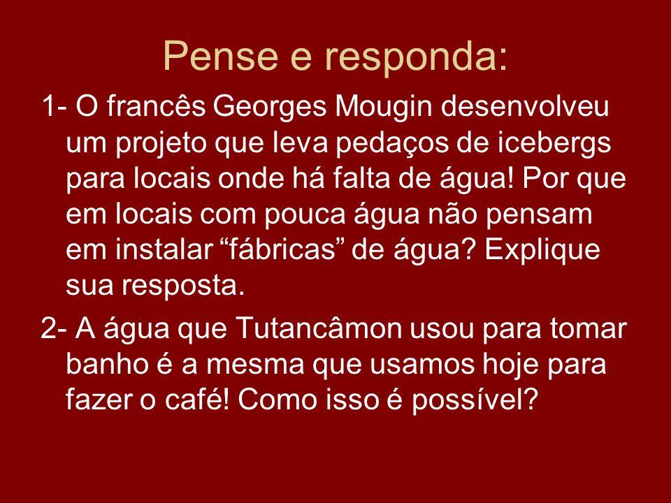 Pense e responda: 1- O francês Georges Mougin desenvolveu um projeto que leva pedaços de icebergs para locais onde há falta de água! Por que em locais