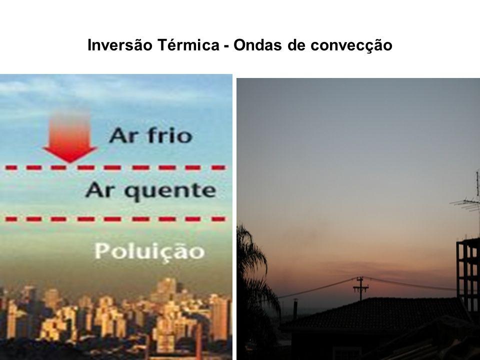 PRINCIPAIS AGENTES DE POLUIÇÃO Mercúrio (Hg).