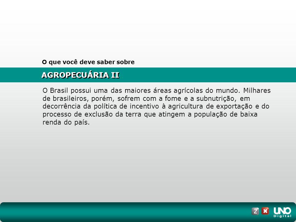 AGROPECUÁRIA II O que você deve saber sobre O Brasil possui uma das maiores áreas agrícolas do mundo. Milhares de brasileiros, porém, sofrem com a fom