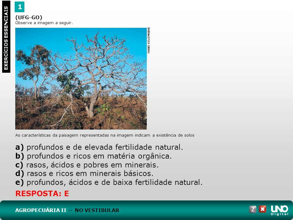 1 EXERC Í CIOS ESSENCIAIS RESPOSTA: E (UFG-GO) Observe a imagem a seguir. As características da paisagem representadas na imagem indicam a existência