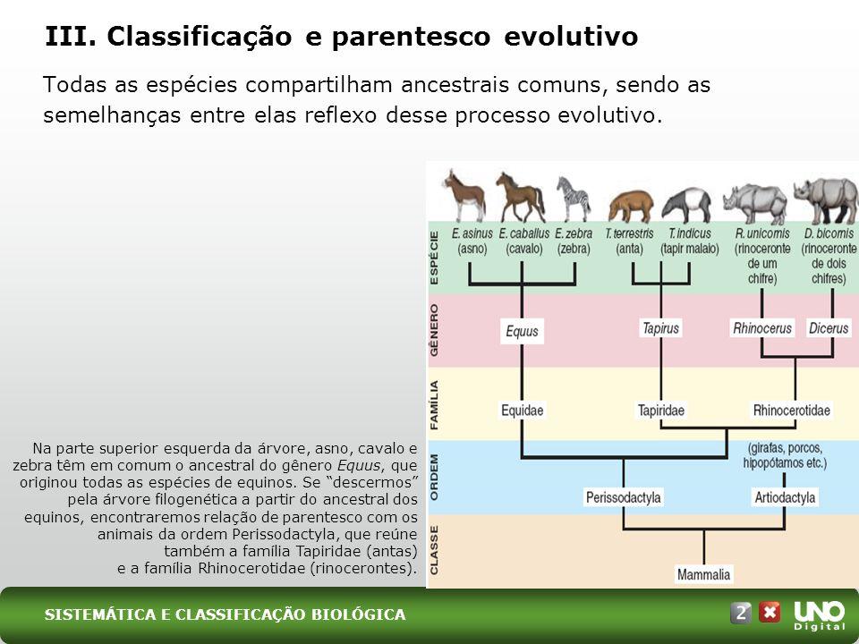 III. Classificação e parentesco evolutivo Todas as espécies compartilham ancestrais comuns, sendo as semelhanças entre elas reflexo desse processo evo