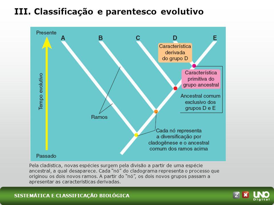 III. Classificação e parentesco evolutivo Pela cladística, novas espécies surgem pela divisão a partir de uma espécie ancestral, a qual desaparece. Ca