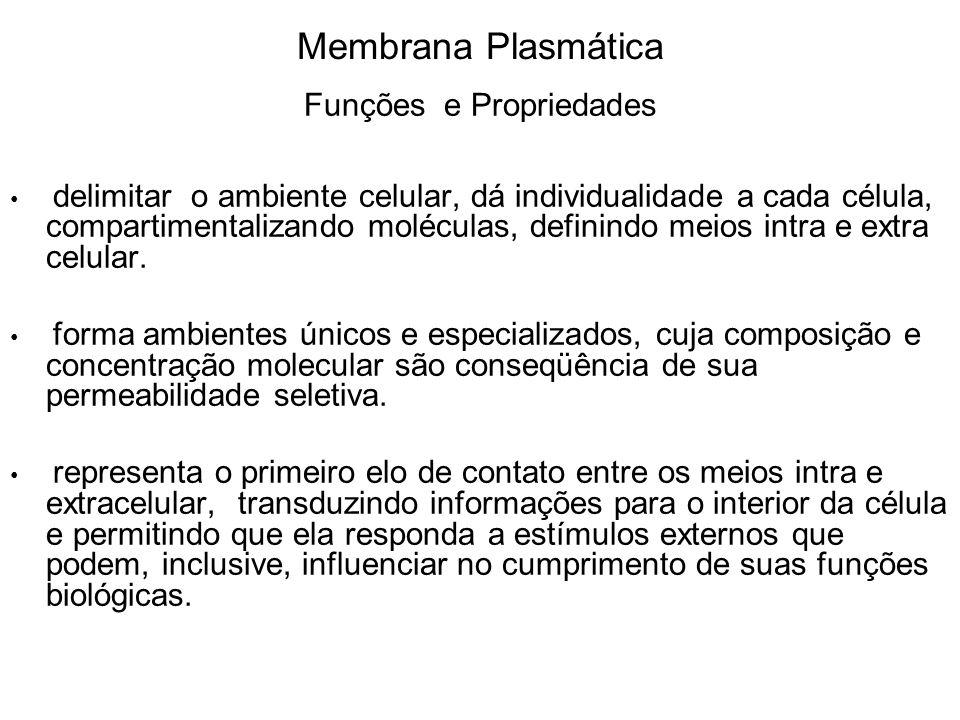 Membrana Plasmática Funções e Propriedades delimitar o ambiente celular, dá individualidade a cada célula, compartimentalizando moléculas, definindo m