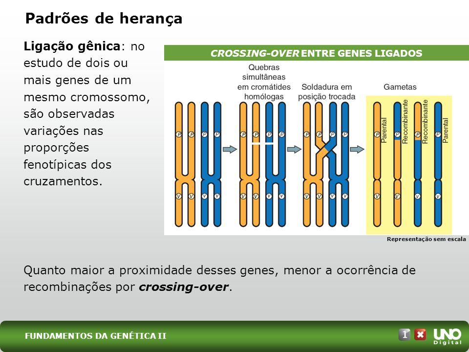 Ligação gênica: no estudo de dois ou mais genes de um mesmo cromossomo, são observadas variações nas proporções fenotípicas dos cruzamentos. Padrões d
