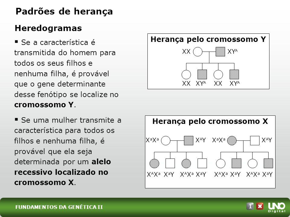Se a característica é transmitida do homem para todos os seus filhos e nenhuma filha, é provável que o gene determinante desse fenótipo se localize no