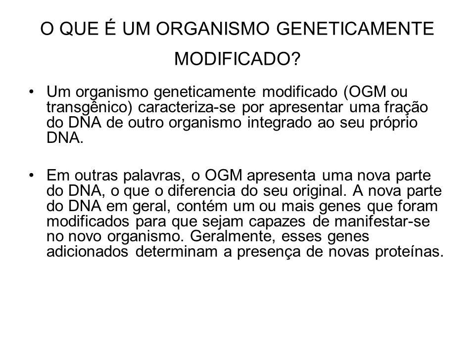 O QUE É UM ORGANISMO GENETICAMENTE MODIFICADO? Um organismo geneticamente modificado (OGM ou transgênico) caracteriza-se por apresentar uma fração do