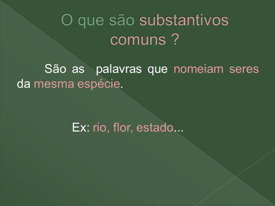 Substantivos terminados em x ficam invariáveis: o ônix – os ônix Substantivos terminados em ão.