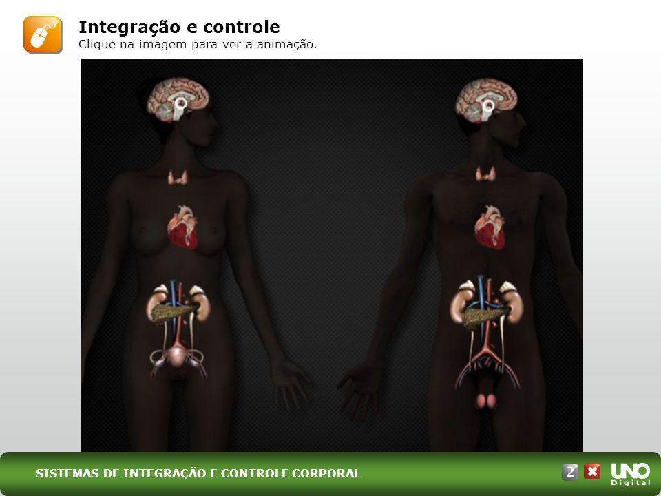 Integração e controle Clique na imagem para ver a animação. SISTEMAS DE INTEGRAÇÃO E CONTROLE CORPORAL