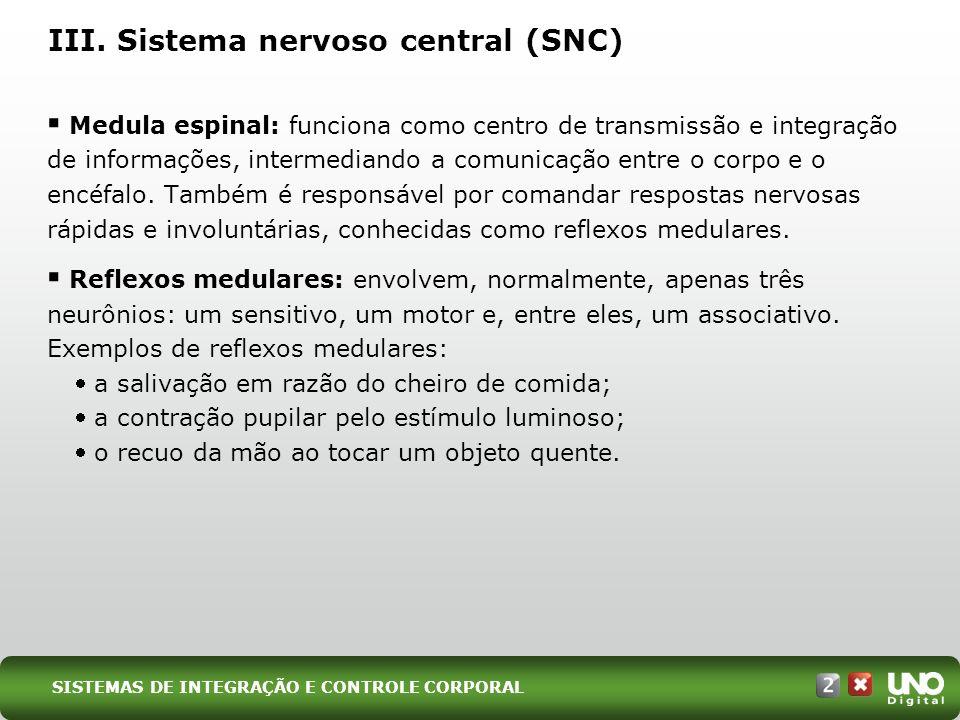 Medula espinal: funciona como centro de transmissão e integração de informações, intermediando a comunicação entre o corpo e o encéfalo. Também é resp