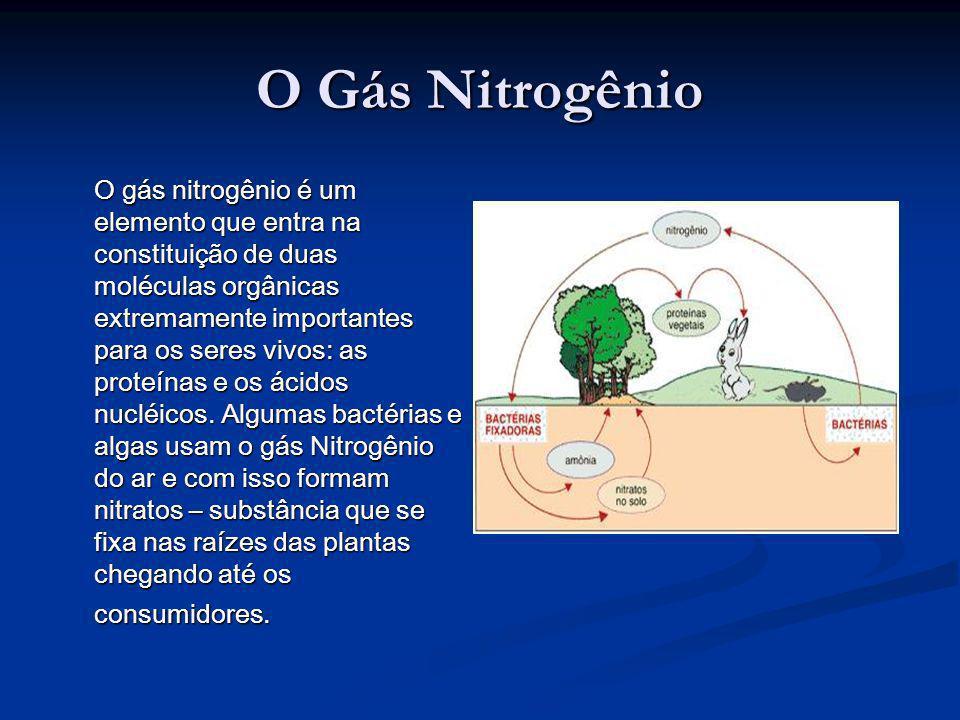 O Gás Nitrogênio O gás nitrogênio é um elemento que entra na constituição de duas moléculas orgânicas extremamente importantes para os seres vivos: as