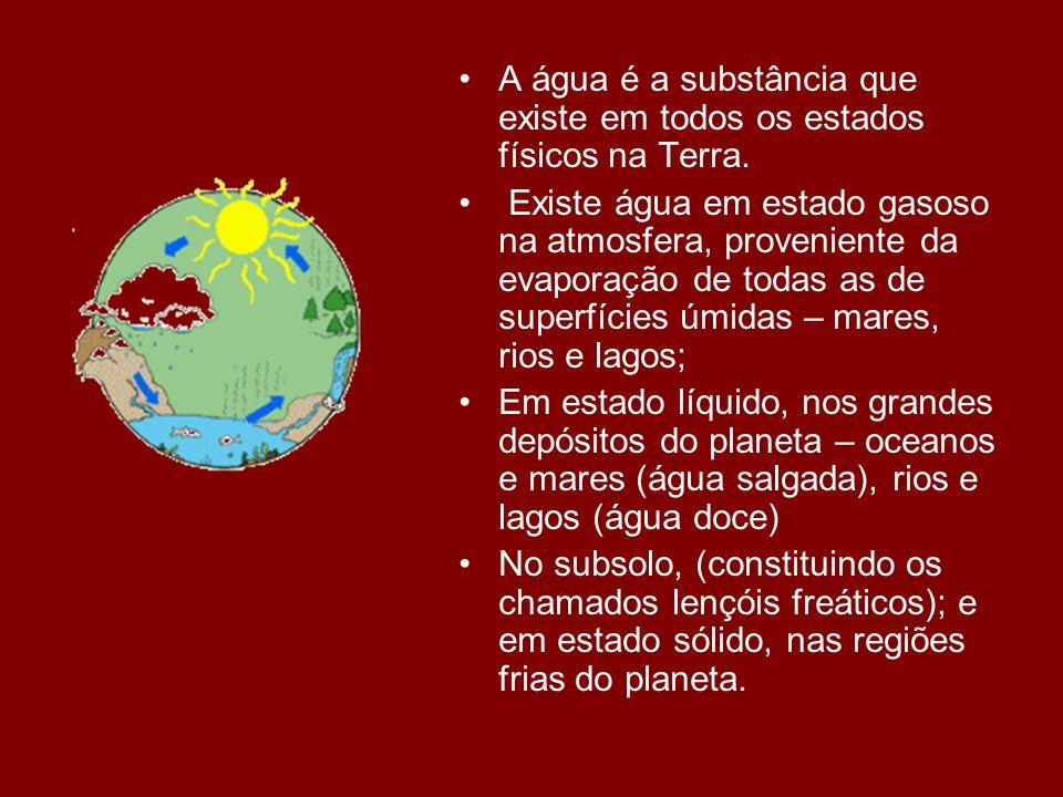 O planeta Terra é formado por ¾ de água (doce e salgada) e apenas ¼ de terra (continentes e ilhas).