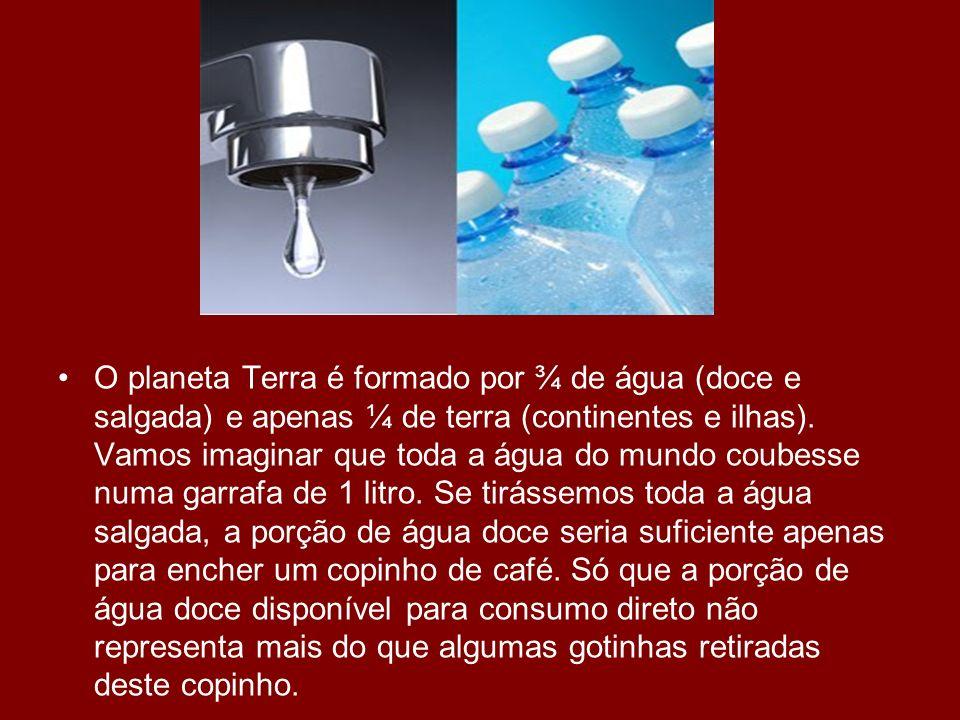 O planeta Terra é formado por ¾ de água (doce e salgada) e apenas ¼ de terra (continentes e ilhas). Vamos imaginar que toda a água do mundo coubesse n