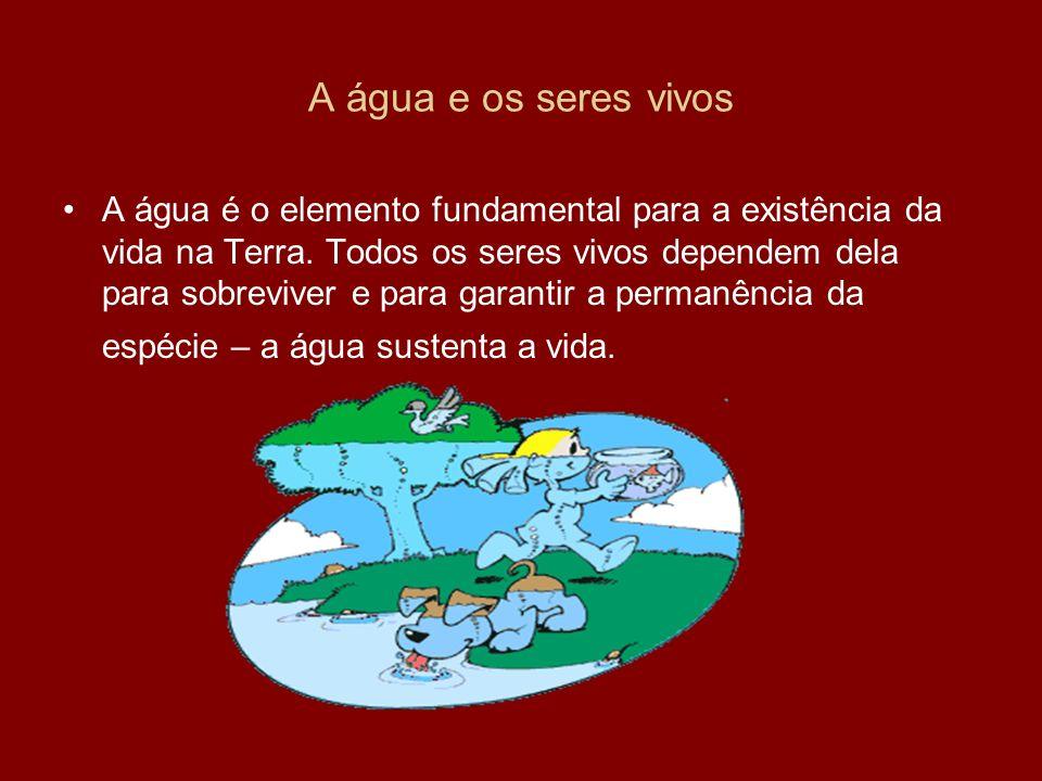 A água e os seres vivos A água é o elemento fundamental para a existência da vida na Terra. Todos os seres vivos dependem dela para sobreviver e para