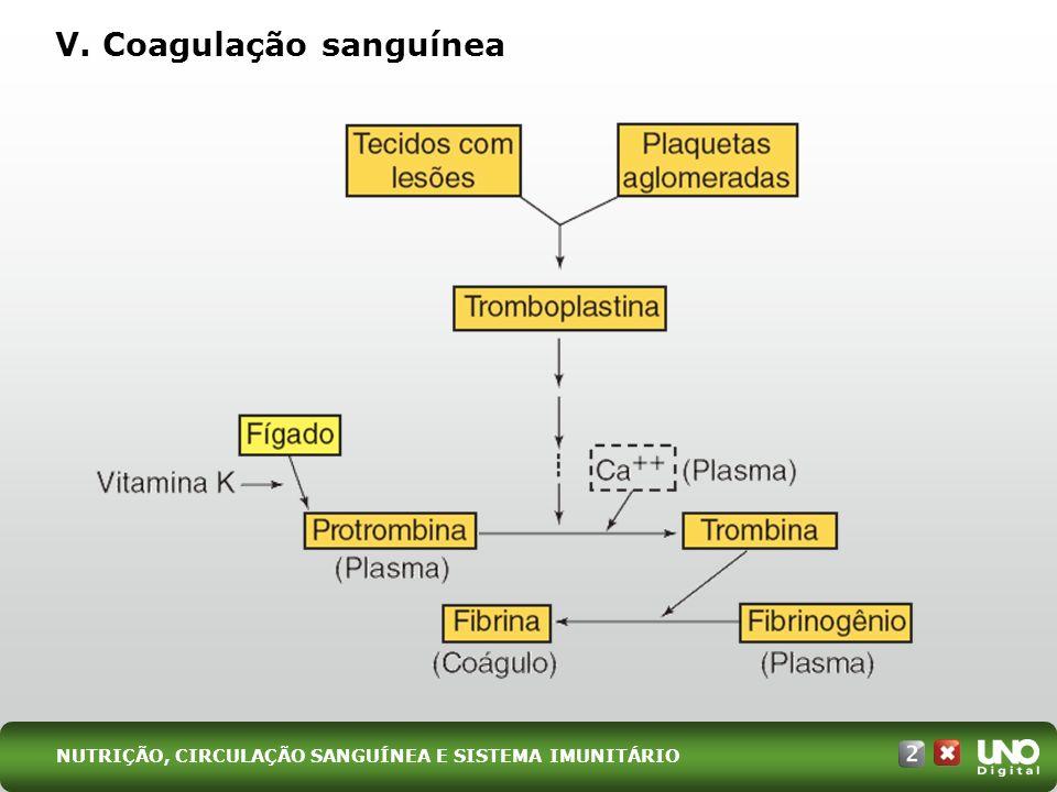 V. Coagulação sanguínea NUTRIÇÃO, CIRCULAÇÃO SANGUÍNEA E SISTEMA IMUNITÁRIO