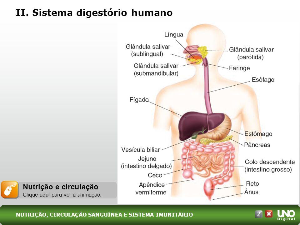 II. Sistema digestório humano Nutrição e circulação Clique aqui para ver a animação. NUTRIÇÃO, CIRCULAÇÃO SANGUÍNEA E SISTEMA IMUNITÁRIO