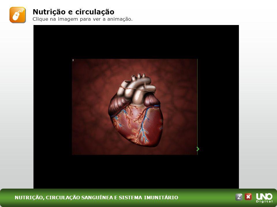 Nutrição e circulação Clique na imagem para ver a animação. NUTRIÇÃO, CIRCULAÇÃO SANGUÍNEA E SISTEMA IMUNITÁRIO