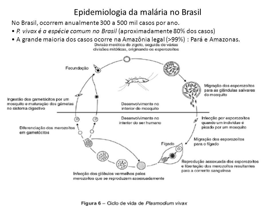 No Brasil, ocorrem anualmente 300 a 500 mil casos por ano. P. vivax é a espécie comum no Brasil (aproximadamente 80% dos casos) A grande maioria dos c