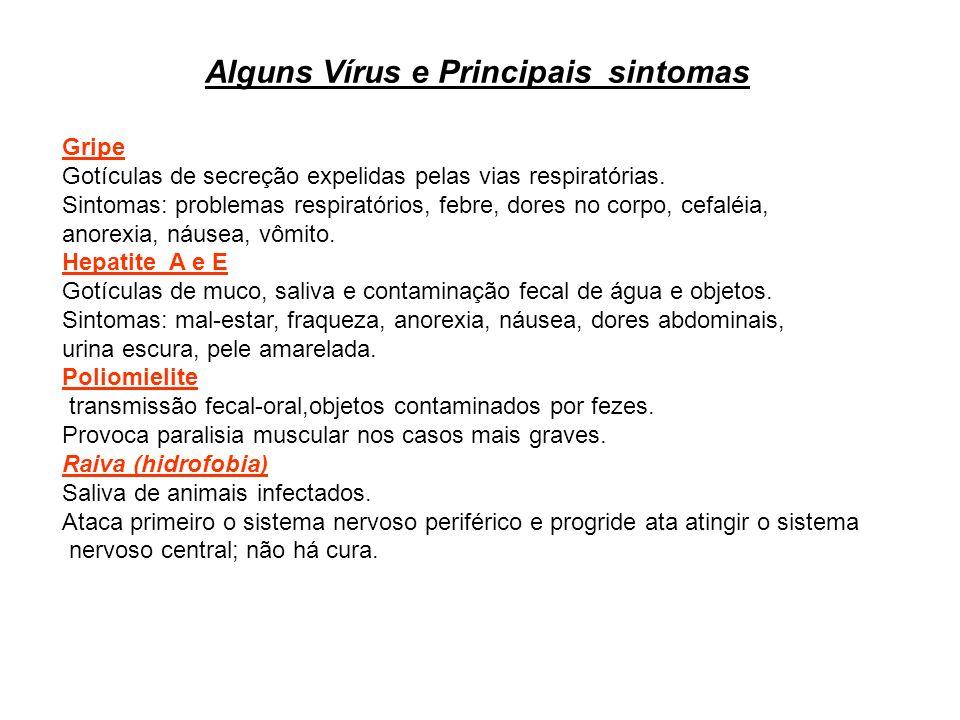 Alguns Vírus e Principais sintomas Gripe Gotículas de secreção expelidas pelas vias respiratórias. Sintomas: problemas respiratórios, febre, dores no