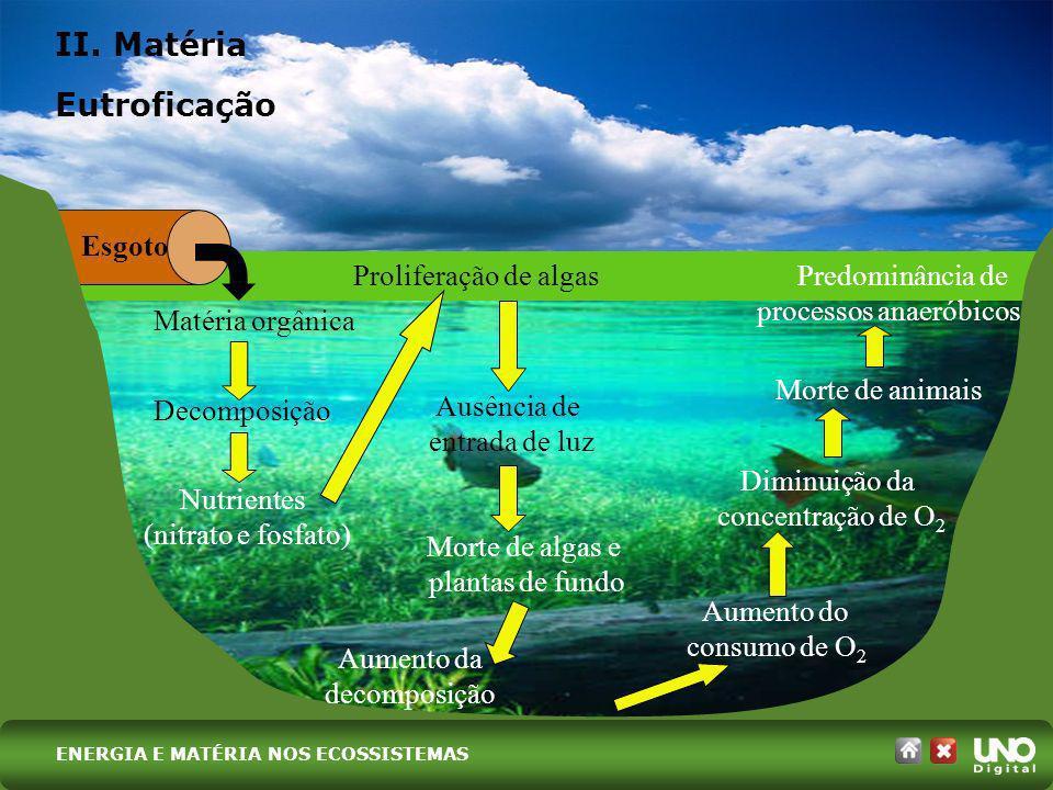 Esgoto Matéria orgânica Decomposição Nutrientes (nitrato e fosfato) Proliferação de algas Ausência de entrada de luz Morte de algas e plantas de fundo