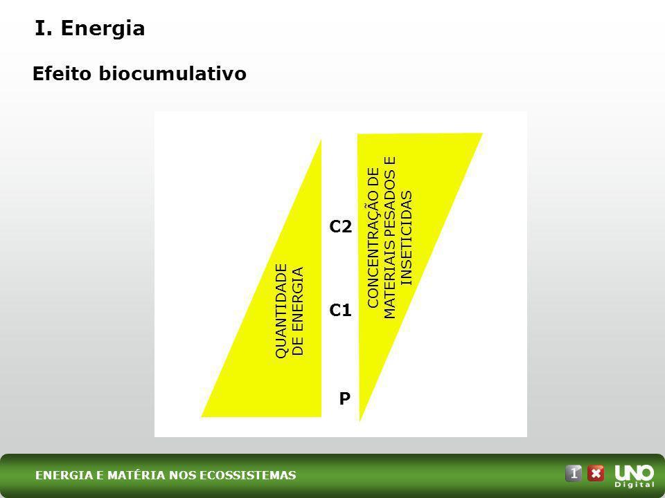 I. Energia P C1 C2 QUANTIDADE DE ENERGIA CONCENTRAÇÃO DE MATERIAIS PESADOS E INSETICIDAS Efeito biocumulativo ENERGIA E MATÉRIA NOS ECOSSISTEMAS
