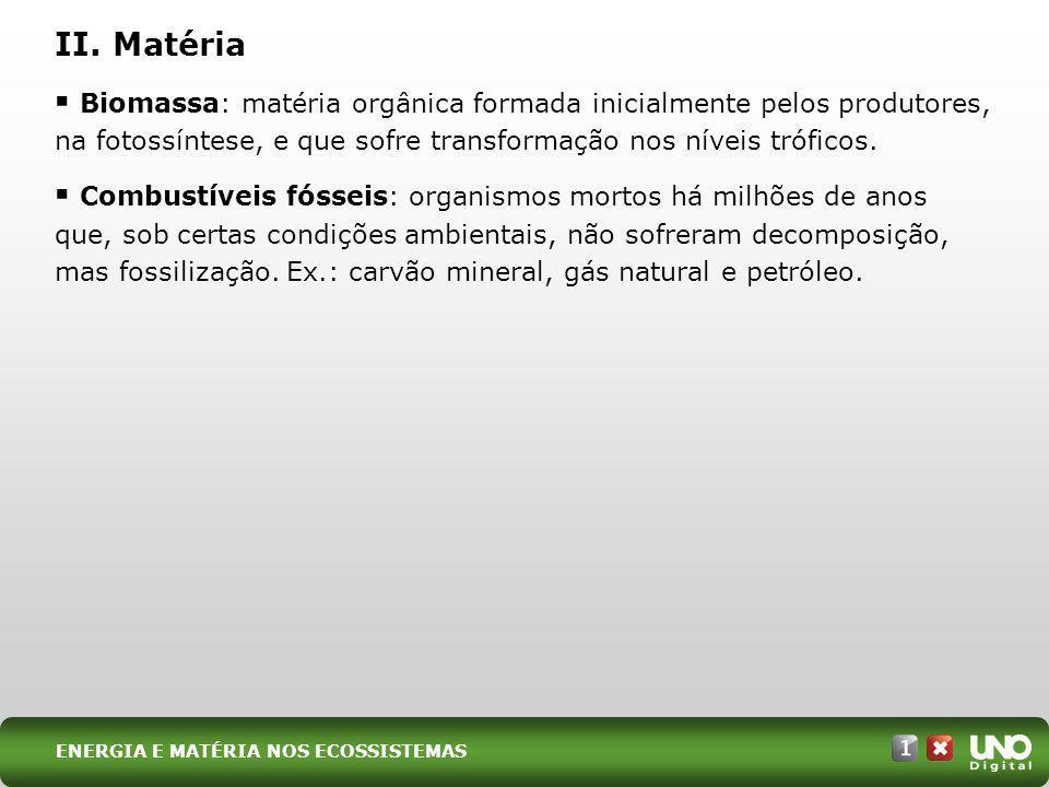 Biomassa: matéria orgânica formada inicialmente pelos produtores, na fotossíntese, e que sofre transformação nos níveis tróficos. Combustíveis fósseis