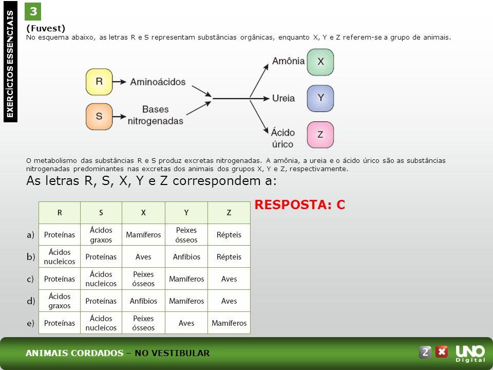 (Fuvest) No esquema abaixo, as letras R e S representam substâncias orgânicas, enquanto X, Y e Z referem-se a grupo de animais. O metabolismo das subs