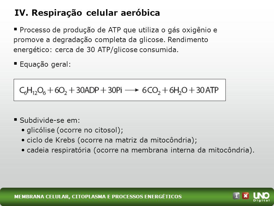 IV. Respiração celular aeróbica Processo de produção de ATP que utiliza o gás oxigênio e promove a degradação completa da glicose. Rendimento energéti
