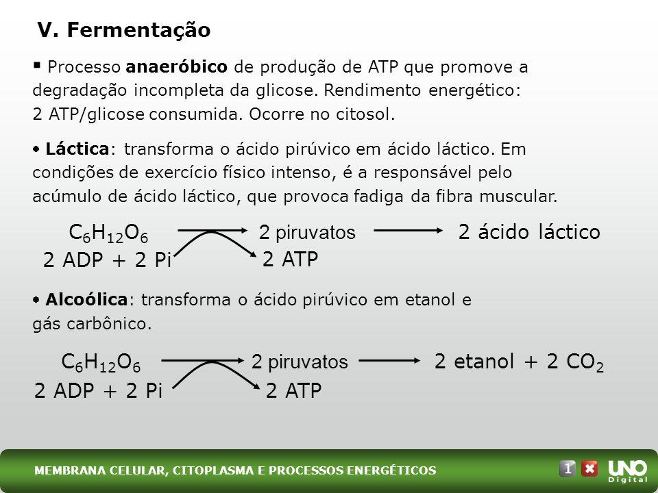 Processo anaeróbico de produção de ATP que promove a degradação incompleta da glicose. Rendimento energético: 2 ATP/glicose consumida. Ocorre no citos