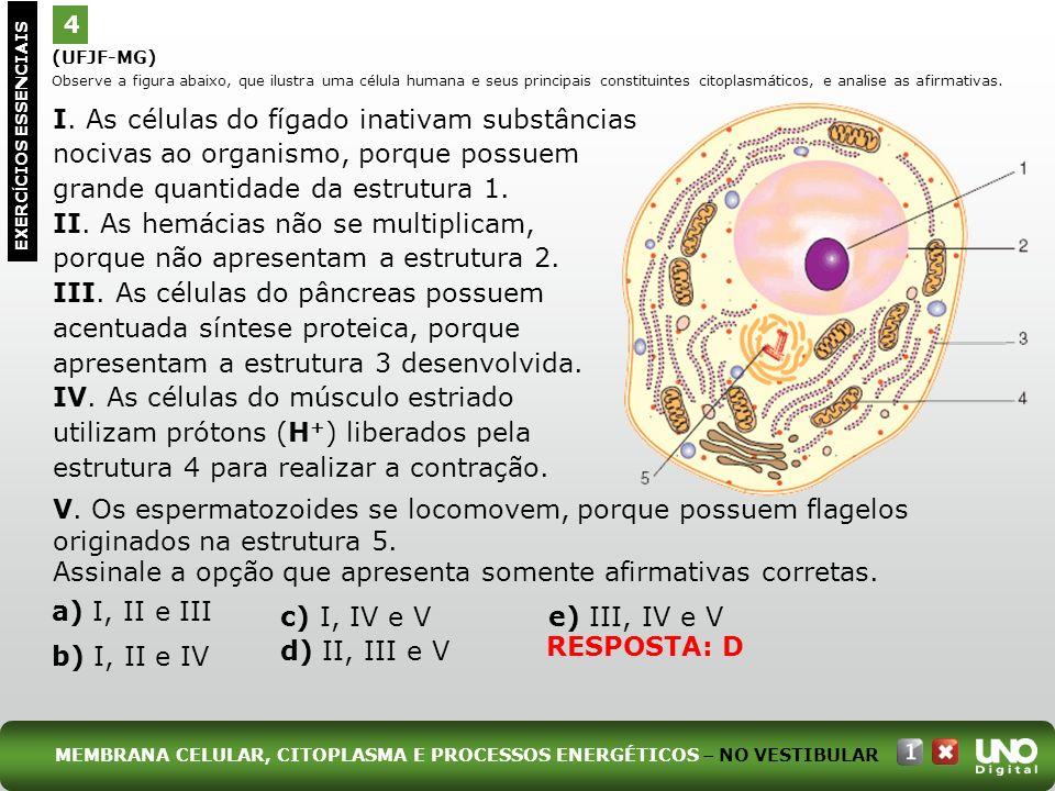 (UFJF-MG) Observe a figura abaixo, que ilustra uma célula humana e seus principais constituintes citoplasmáticos, e analise as afirmativas. 4 EXERC Í