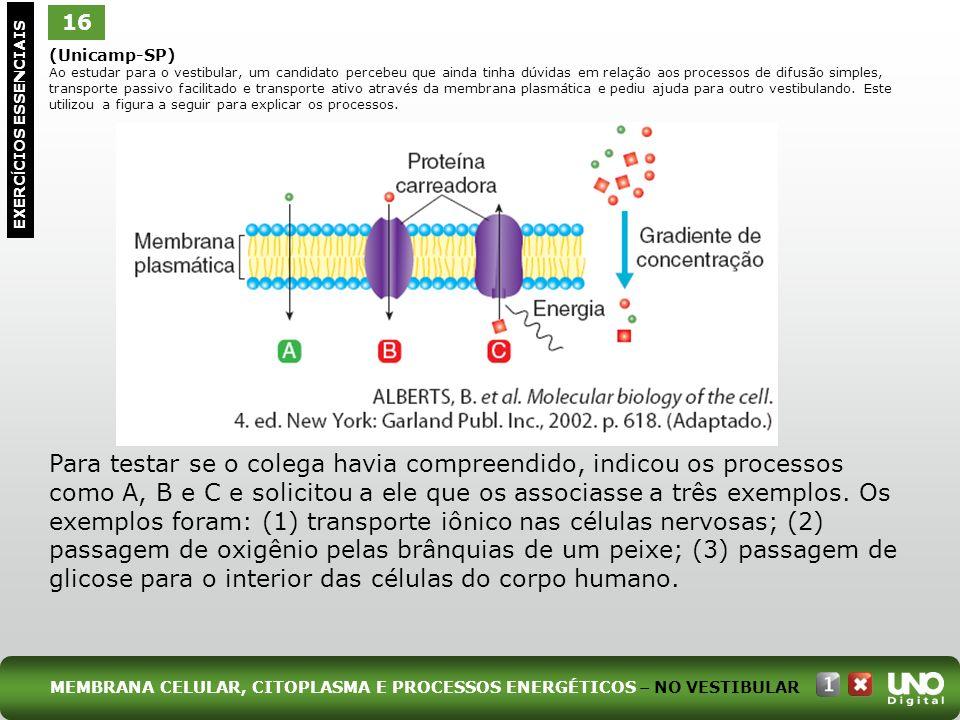 16 EXERC Í CIOS ESSENCIAIS (Unicamp-SP) Ao estudar para o vestibular, um candidato percebeu que ainda tinha dúvidas em relação aos processos de difusã