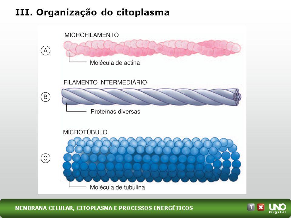 III. Organização do citoplasma MEMBRANA CELULAR, CITOPLASMA E PROCESSOS ENERGÉTICOS