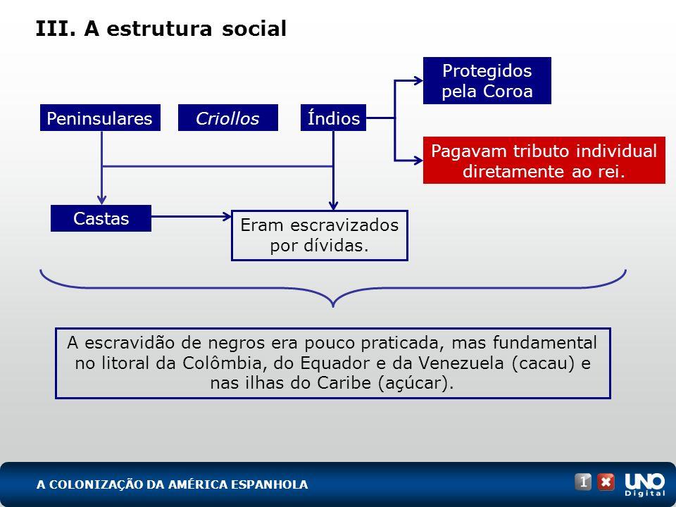 III. A estrutura social A escravidão de negros era pouco praticada, mas fundamental no litoral da Colômbia, do Equador e da Venezuela (cacau) e nas il