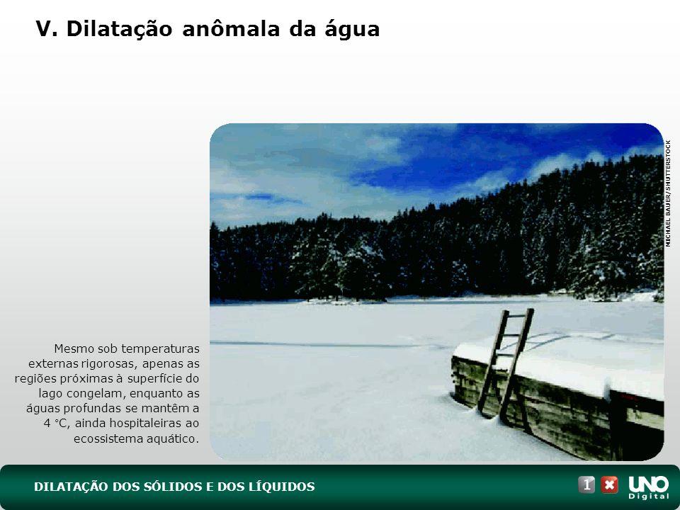 Mesmo sob temperaturas externas rigorosas, apenas as regiões próximas à superfície do lago congelam, enquanto as águas profundas se mantêm a 4 °C, ainda hospitaleiras ao ecossistema aquático.