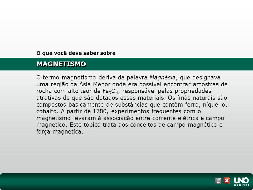 MAGNETISMO O que você deve saber sobre O termo magnetismo deriva da palavra Magnésia, que designava uma região da Ásia Menor onde era possível encontr