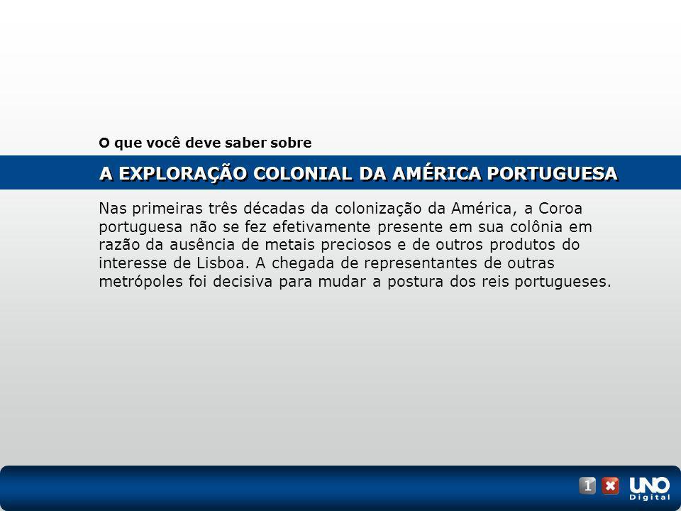 A EXPLORAÇÃO COLONIAL DA AMÉRICA PORTUGUESA O que você deve saber sobre Nas primeiras três décadas da colonização da América, a Coroa portuguesa não s