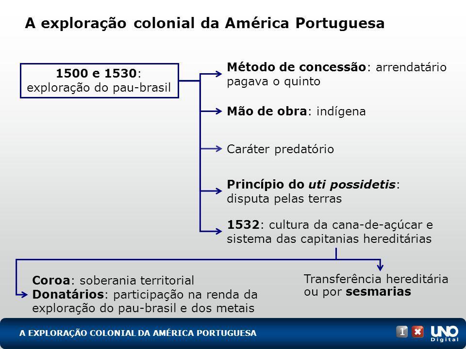 A exploração colonial da América Portuguesa 1500 e 1530: exploração do pau-brasil Método de concessão: arrendatário pagava o quinto Mão de obra: indíg