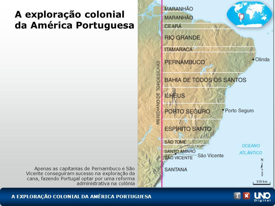 A EXPLORAÇÃO COLONIAL DA AMÉRICA PORTUGUESA A exploração colonial da América Portuguesa Apenas as capitanias de Pernambuco e São Vicente conseguiram s
