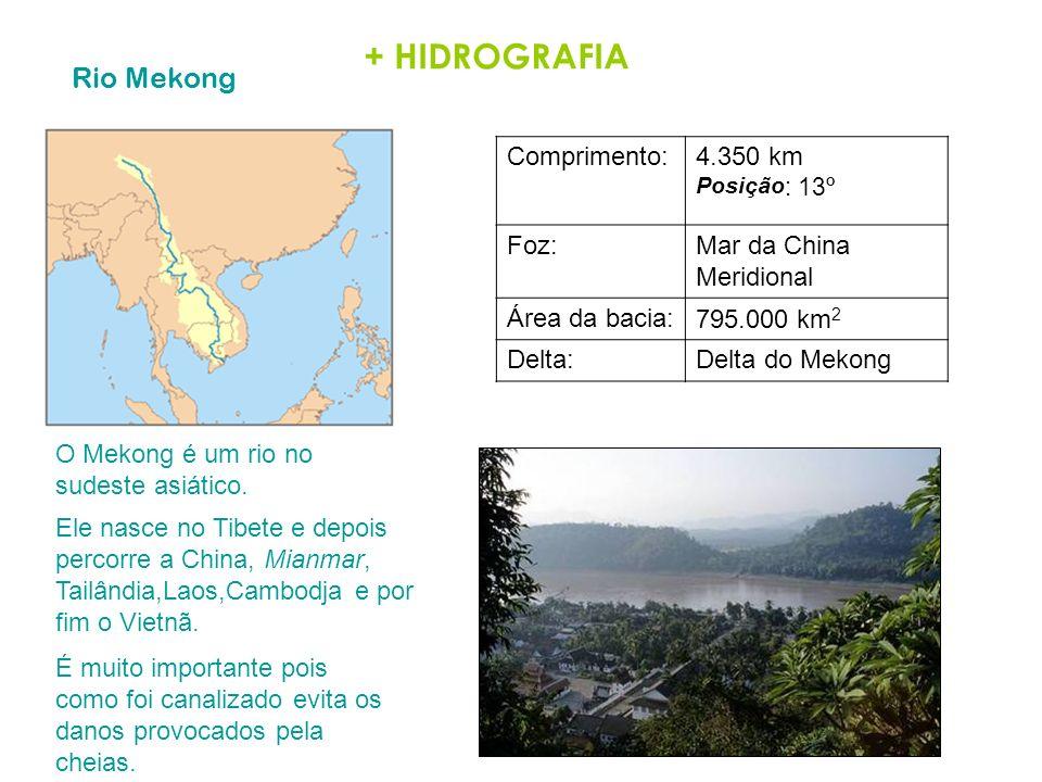 + HIDROGRAFIA Rio Mekong Comprimento:4.350 km Posição : 13º Foz:Mar da China Meridional Área da bacia:795.000 km 2 Delta:Delta do Mekong O Mekong é um
