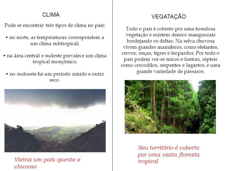 CLIMA Pode se encontrar três tipos de clima no país: no norte, as temperaturas correspondem a um clima subtropical; na área central e sudeste prevalec