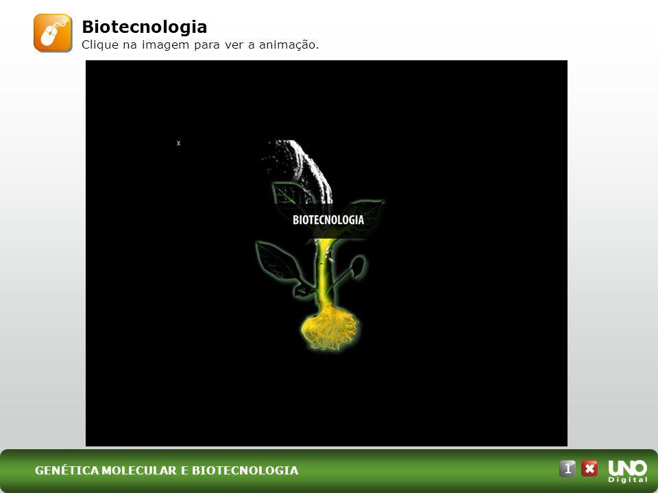 Biotecnologia Clique na imagem para ver a animação. GENÉTICA MOLECULAR E BIOTECNOLOGIA