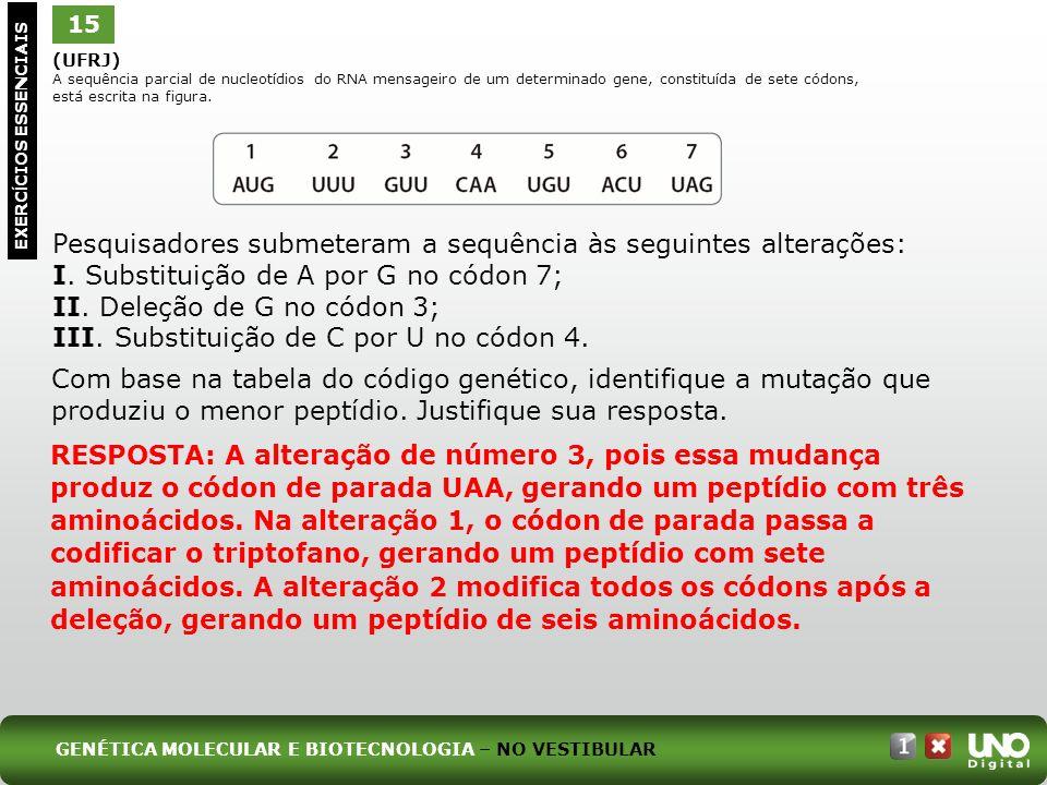 (UFRJ) A sequência parcial de nucleotídios do RNA mensageiro de um determinado gene, constituída de sete códons, está escrita na figura. Pesquisadores