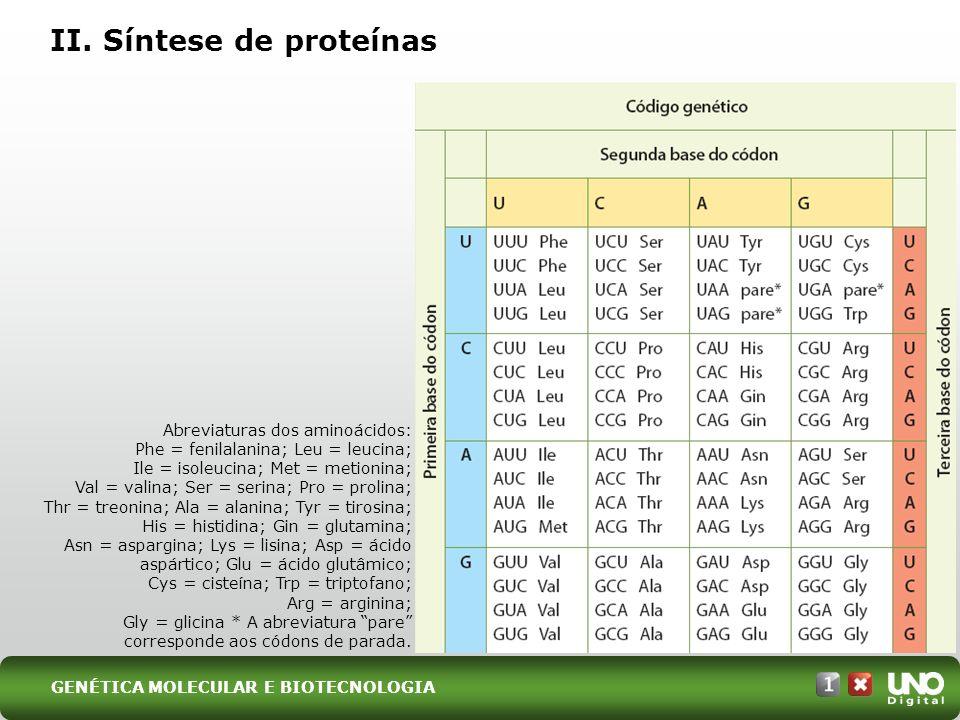 II. Síntese de proteínas Abreviaturas dos aminoácidos: Phe = fenilalanina; Leu = leucina; Ile = isoleucina; Met = metionina; Val = valina; Ser = serin