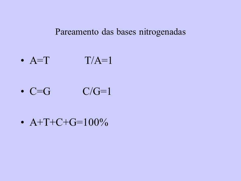 Pareamento das bases nitrogenadas A=T T/A=1 C=G C/G=1 A+T+C+G=100%