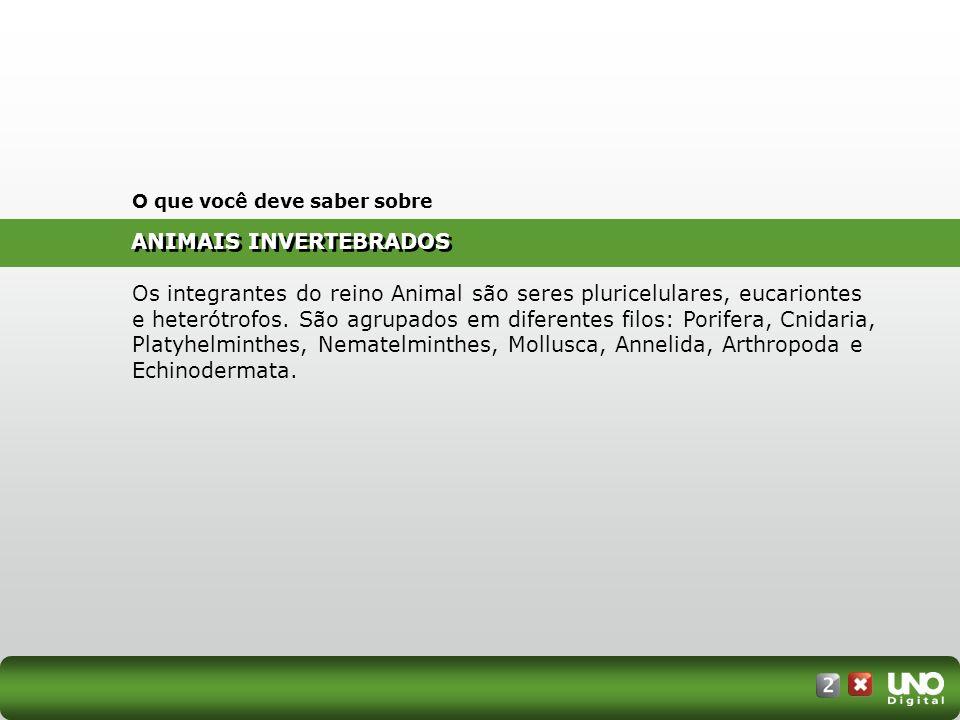 ANIMAIS INVERTEBRADOS O que você deve saber sobre Os integrantes do reino Animal são seres pluricelulares, eucariontes e heterótrofos. São agrupados e