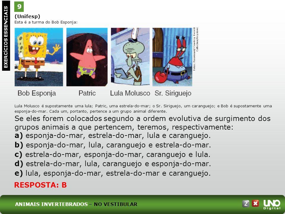 (Unifesp) Esta é a turma do Bob Esponja: Lula Molusco é supostamente uma lula; Patric, uma estrela-do-mar; o Sr. Siriguejo, um caranguejo; e Bob é sup