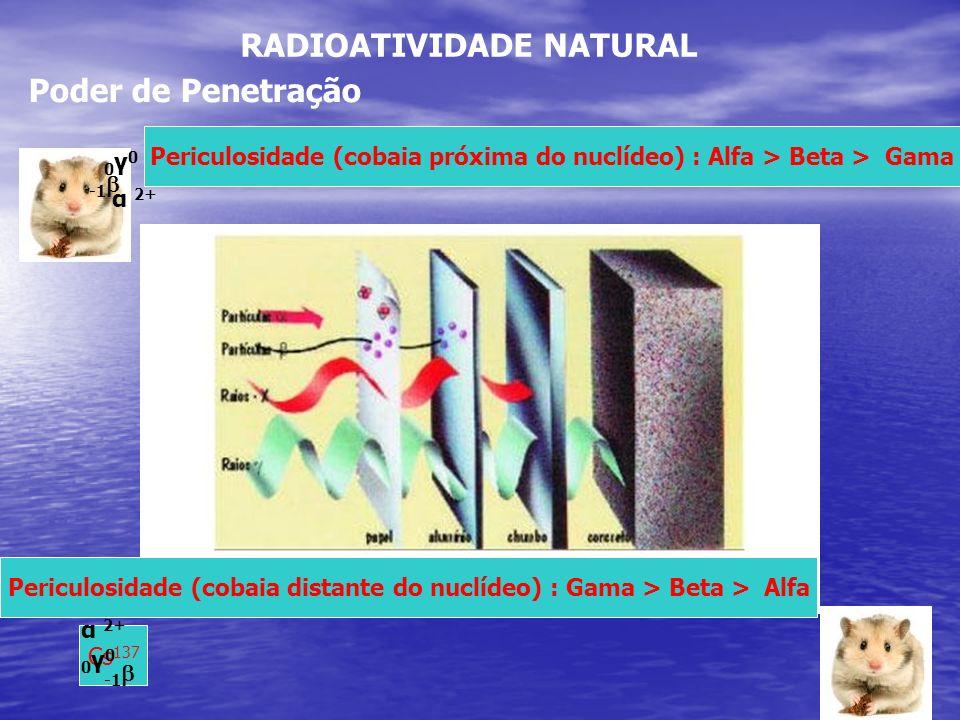 RADIOATIVIDADE NATURAL Poder de Penetração α 2+ Cs 137 α 2+ 0γ00γ0 0γ00γ0 Periculosidade (cobaia próxima do nuclídeo) : Alfa > Beta > Gama Periculosid