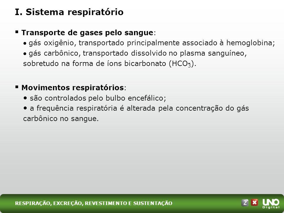 Transporte de gases pelo sangue: gás oxigênio, transportado principalmente associado à hemoglobina; gás carbônico, transportado dissolvido no plasma s