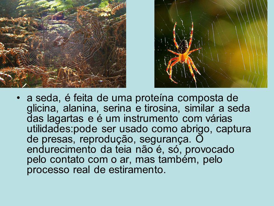 Aranhas peçonhentas No Brasil temos quatro consideradas como muito perigosas, que são: a Viúva Negra, a Aranha Armadeira, a Aranha Marrom e a Tarântula.